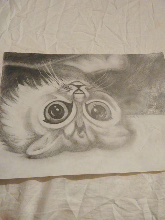 Upside-Down Kitty - Work