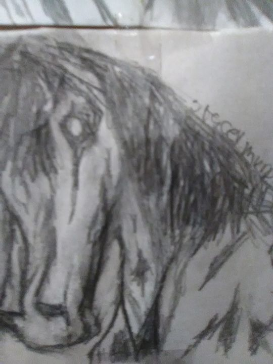 Horse - Stacey fays artistic prints