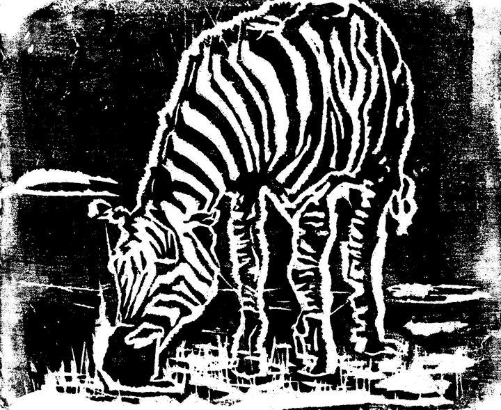Zebra - TNN