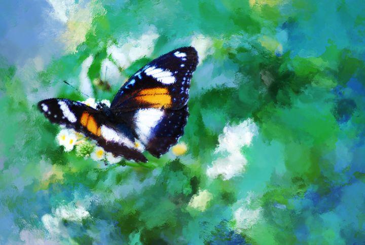 Butterfly Perch - OURA art