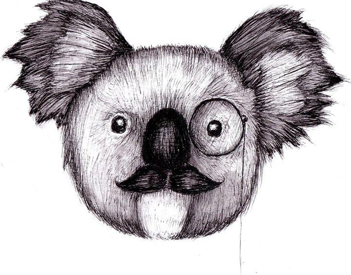 Koala - Ishkaart