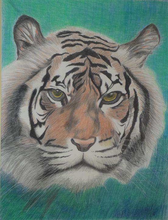 Tiger @ 1 - www.Artpal.com/alphacortius