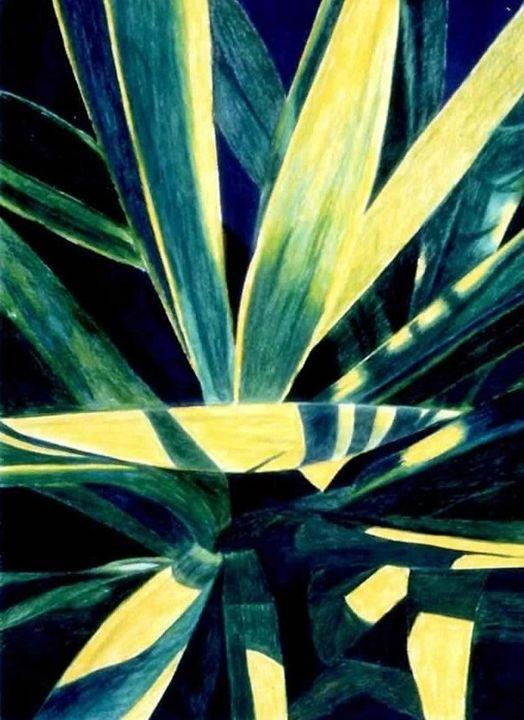 Golden Sword Yucca # 3 - www.Artpal.com/alphacortius