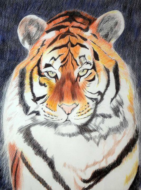 Tiger # 2 - www.Artpal.com/alphacortius