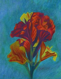 Red Canna with yellow - www.Artpal.com/alphacortius