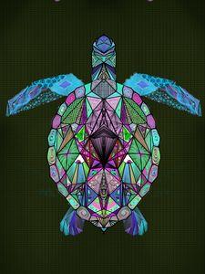 trippy turtle purple/blue