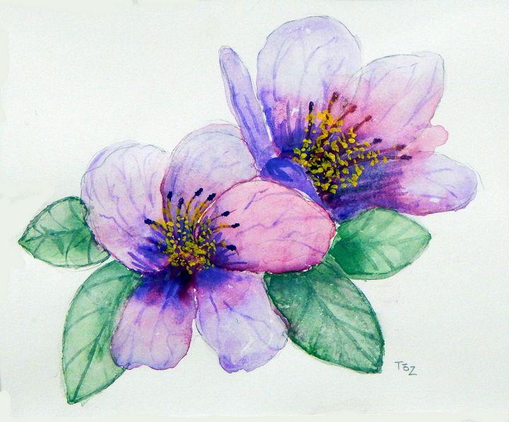 Lavender Flower - Toz