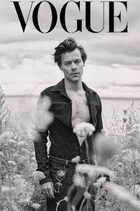 Harry, Styles, Magazine ,Cover,Print