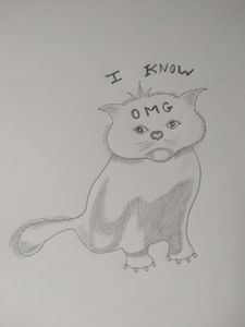 OMG Cat ( Kitty )