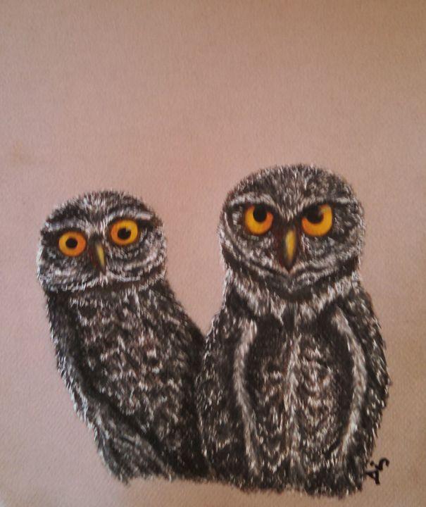 owls - dianestudio