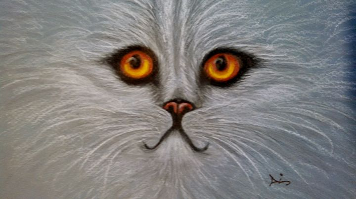 cat persian - dianestudio