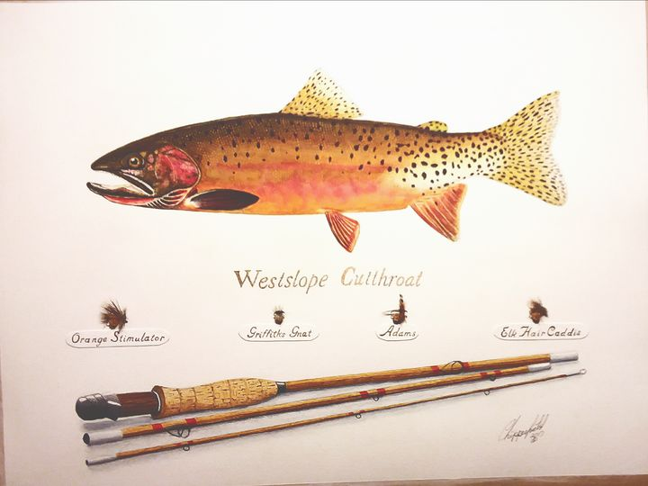 Westslope cutthroat - The art of the Chip