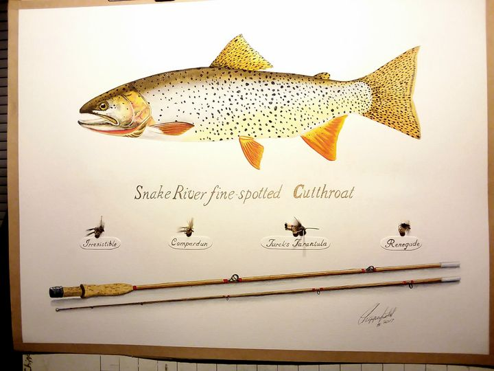 Snake river fine spot Cutthroat - The art of the Chip