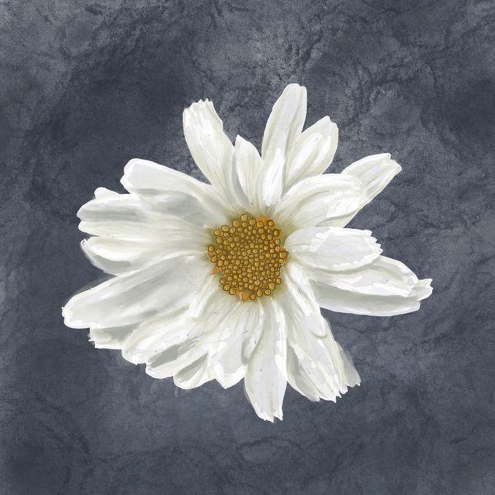 Daisy on Grey - Catherine Dunn Art