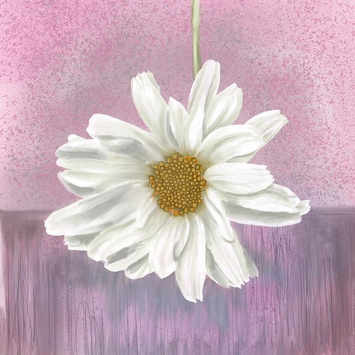 Daisy on Pink - Catherine Dunn Art