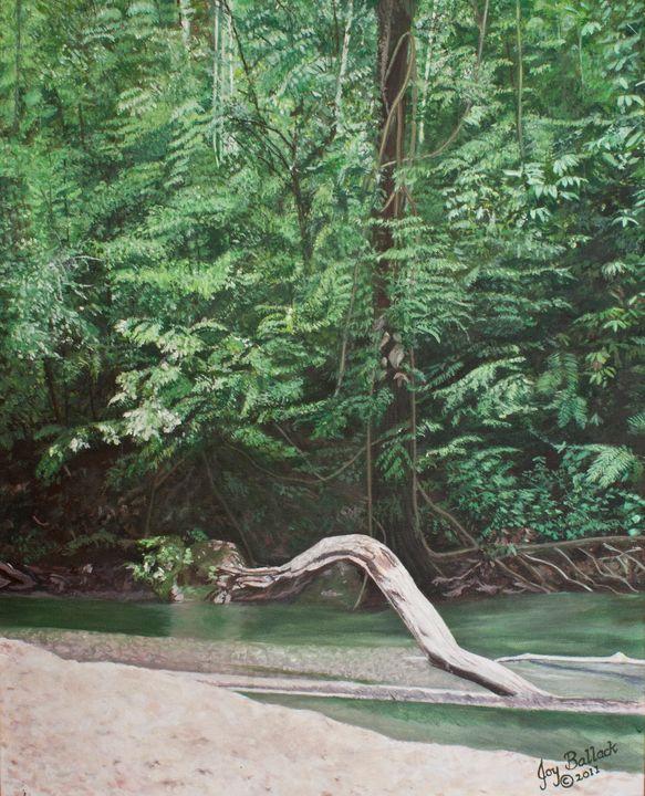 Mountain River Adventure - JoyBallackFineArt