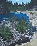 British Columbia river painting.