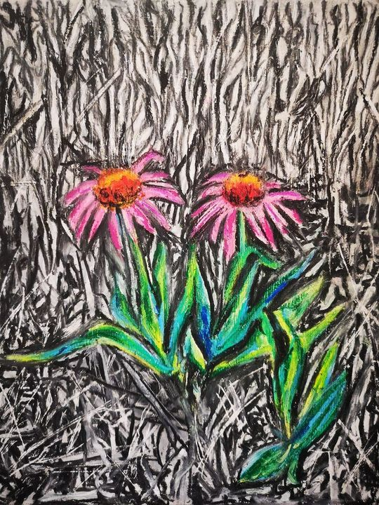 Purple Coneflower-Echinacea purpurea - Poonam Singh's Art