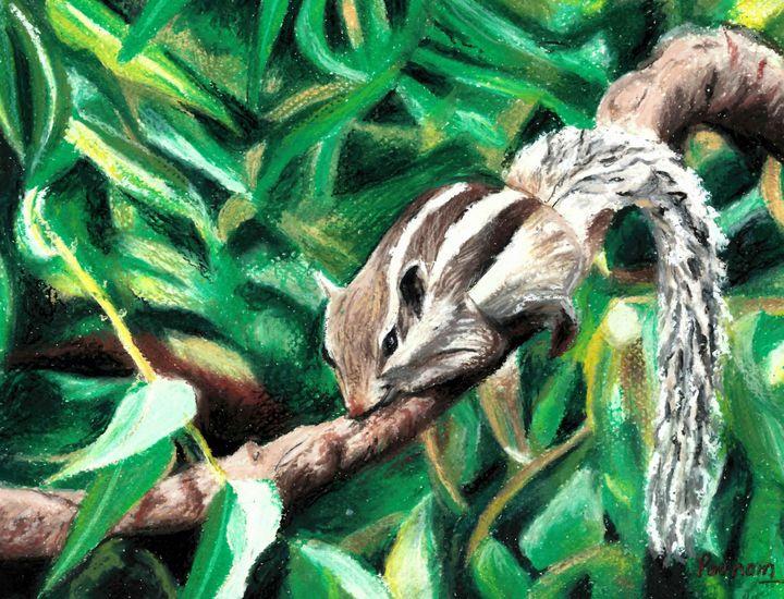 Squirrel - Poonam Singh's Art