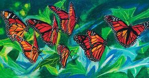 Monarch Flutterflies