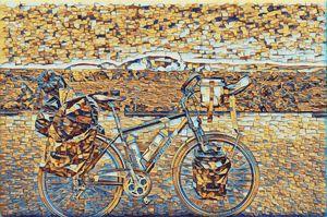 Summer cycling