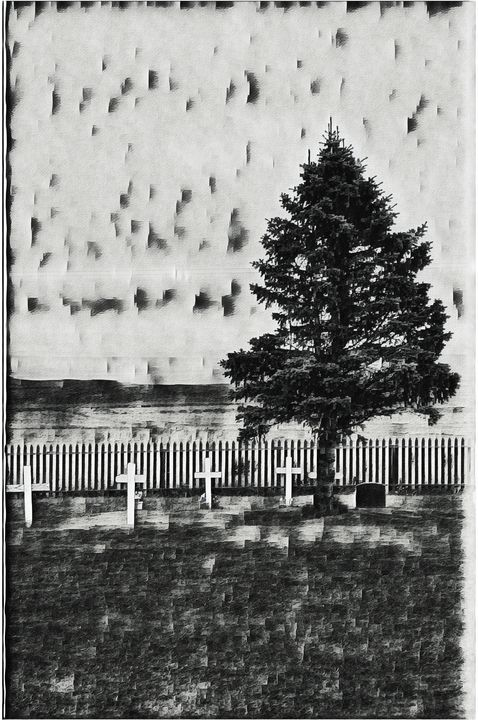 Four crosses and a tree - deep-sea