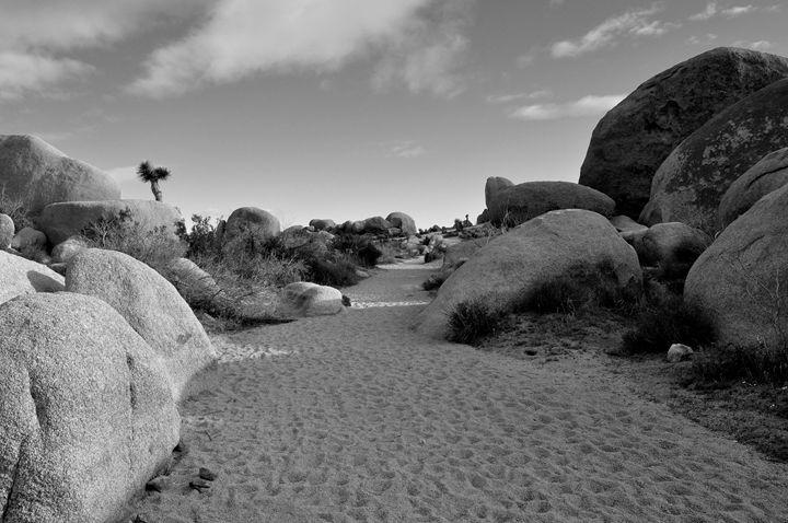 Sandy Pathway I B&W - Lubit Arts
