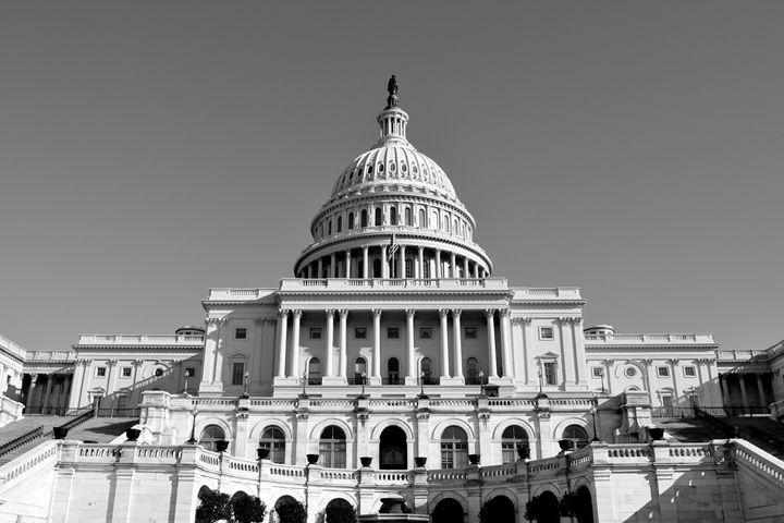 U.S. Capitol I B&W - Lubit Arts
