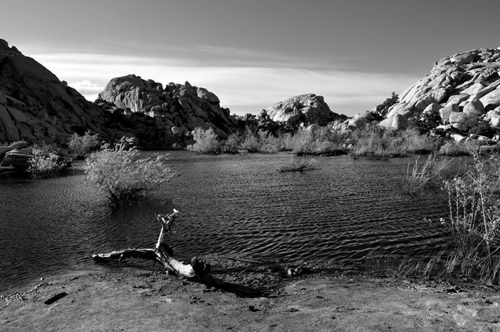 Desert Lake B&W - Lubit Arts