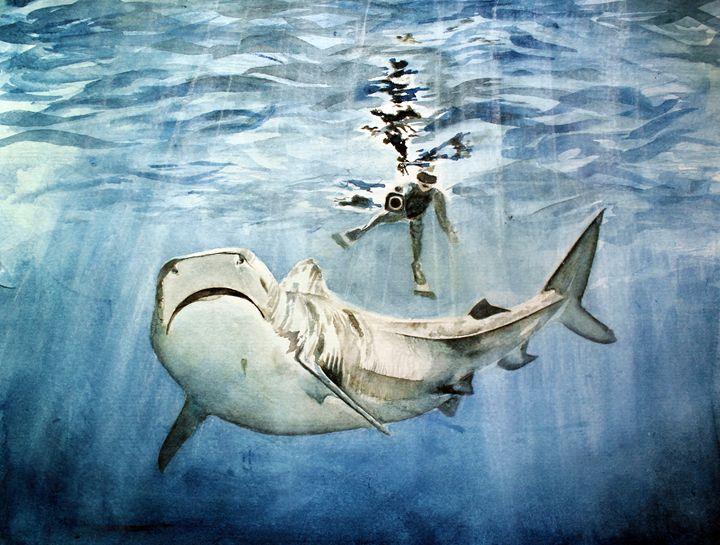 Shark & Man - Sara XXII