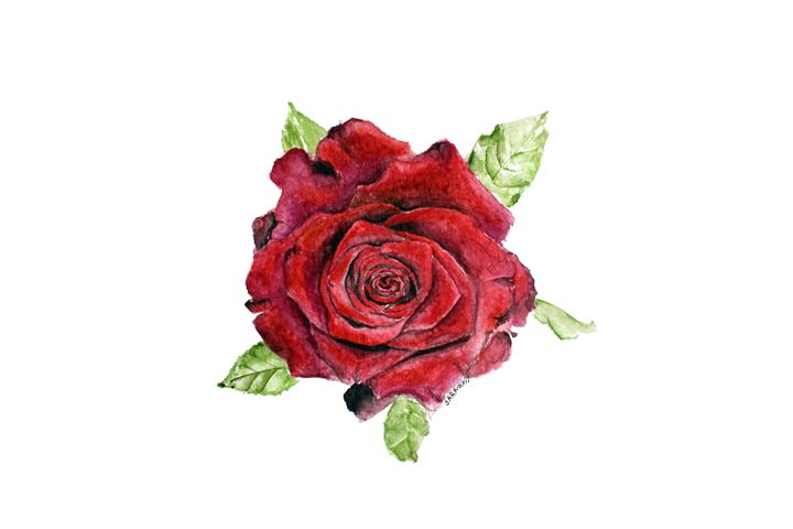Red Rose - Sara XXII