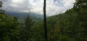 smoky mountain