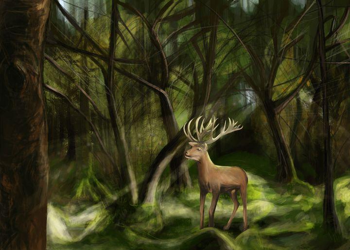 Forest Glade - Morose