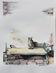 Siesta de Gato