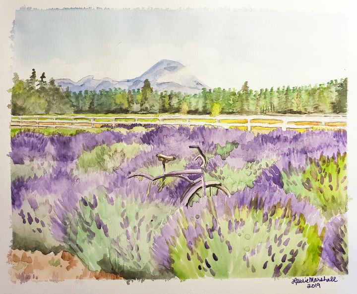 Lavender Bicycle - Laurie Ann Marshall
