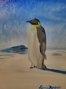 Penguin Infatuation