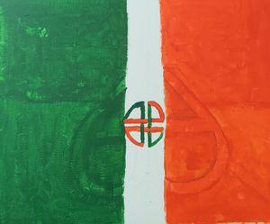 Irish flag and shield