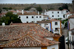 Portuguese souvenir tiled roofs - Elena Zapassky