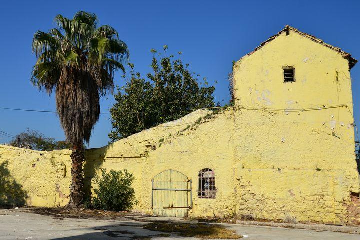 Old house in Jaffa - Elena Zapassky