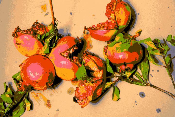 Pomegranate - Elena Zapassky