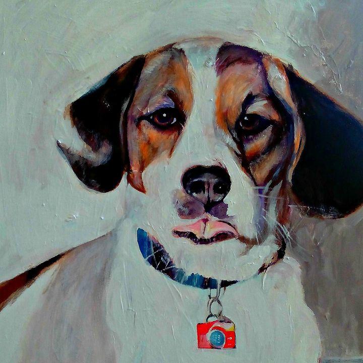 Pet Portrait 03052015 - Josephus Bartin