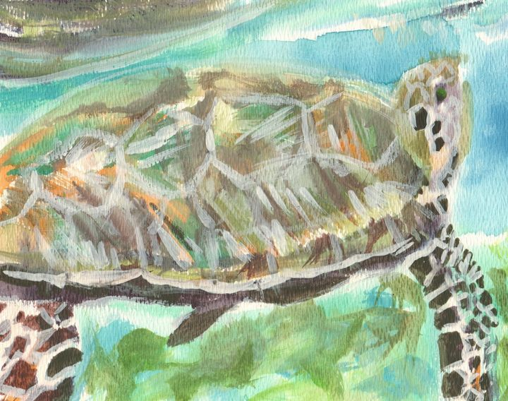Caribbean Sea Turtle - PaintSarahPaint