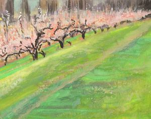 Apple Trees In Spring - PaintSarahPaint