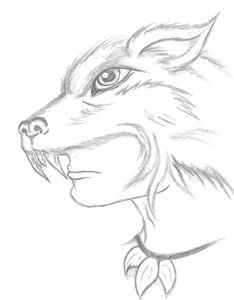 Wolf Shaman