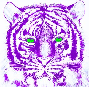Hand Painted Purple Tiger