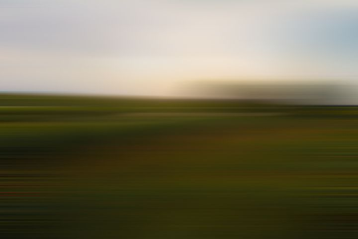 Marsh Madness - Abstract Photography