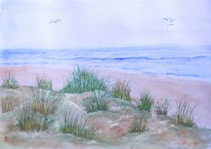 Dunes at the Beach - Eric Litchfield