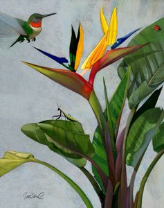 Hummingbird tropical Giclee 16x20""