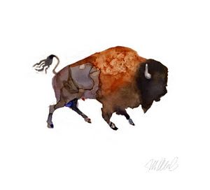 "Watercolor Buffalo, 10x10"" Giclee"