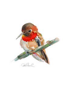 "Rufus Hummingbird, Giclee 9x12"""